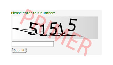captcha-example-first